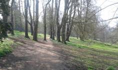 OCM Headington Hill Park